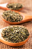 Oregano spice Stock Images