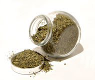 Oregano spill Stock Photography