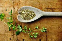 Oregano Sprig with Dried on a Wood Table Royalty Free Stock Image