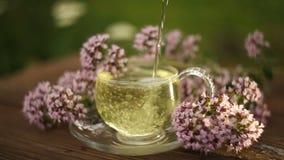 Oregano tea in a beautiful glass bowl on table stock video footage