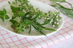 Oregano, thyme,rosemary Stock Photo