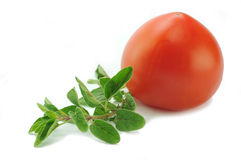 Oregano and tomato. Mediterranean food ingredients Royalty Free Stock Photography