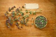 oregano torkat Växt- medicin, phytotherapy medicinska örter Arkivfoto