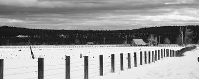 Oregon-Bauernhof-Landschaft mit frischem Schnee entlang Fenceline Lizenzfreie Stockfotos