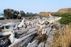 Oregon Beach Driftwood. Driftwood piled on Oregon beach against hillside greenery, and rocky outcrops against blue ocean Royalty Free Stock Photos