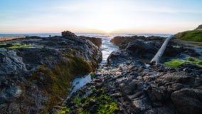 Oregon beach at dusk stock photos