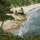 Oregon beaches Royalty Free Stock Photo