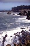 Oregon brzegowi portrety fotografia stock