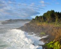 Oregon Coast Royalty Free Stock Photo