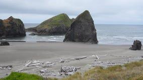 Oregon coast debris Royalty Free Stock Photo