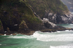 Oregon Coast Headlands Stock Images