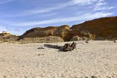 Oregon coast Lincoln City beach erosion. Stock Photos