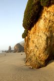 Oregon coast portrait. Sandstone cliffs along the Oregon coast at sunset. Shore Acres state park and the sandstone cliffs. Focus point is at foreground rocks Stock Image