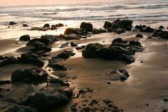 Oregon coast portraits Royalty Free Stock Photos