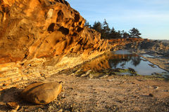 Oregon coast portraits. Shore Acres state park and the sandstone cliffs Royalty Free Stock Photography