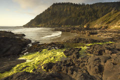 Oregon coast portraits. Low tide exposing the shore at Cape Perpetua Stock Photos