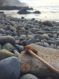 Oregon Coast stones and driftwood. Stones on the beach near Yachats Royalty Free Stock Images