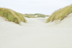 Oregon Coastal Sand Dunes Stock Images