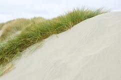 Oregon Coastal Sand Dunes Stock Photos