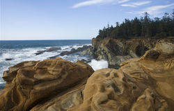 Oregon Coastline Stock Images