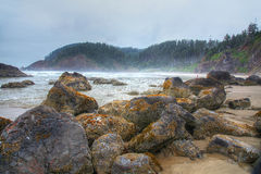 Oregon coastline Stock Photography