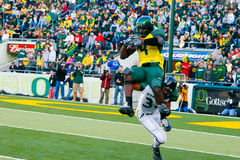 Oregon Ducks Football at Autzen Stadium. Eugene, OR, USA - October 28, 2006: Oregon ducks receiver Jaison Williams makes a catch before being tackled in the UO Royalty Free Stock Photography