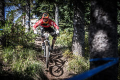 Oregon Enduro - John Frey Stock Fotografie