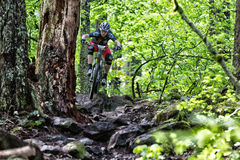 2013 Oregon Enduro - John Frey Stock Images