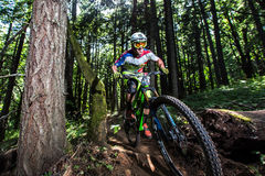 Oregon Enduro Series - Darrin Seeds Royalty Free Stock Image
