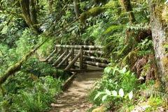 Oregon EUA Imagens de Stock