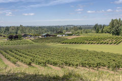 Oregon farms fields and landscape. Royalty Free Stock Image