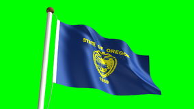 Oregon flag stock video