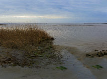 Oregon Inlet NC bay area with fishing boats, sound and marshes a Stock Photo