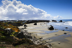 Oregon-Küste Stockfotografie