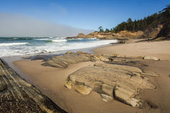 Oregon-Küstenporträt Stockbilder
