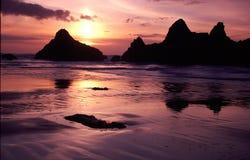 Oregon-Küsteportraits Lizenzfreies Stockbild