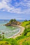 Oregon kust Royaltyfri Bild
