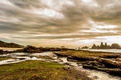 Oregon kust Rocky Landscape arkivfoton