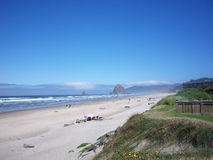 Oregon kustlinje Royaltyfri Bild