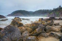 Oregon kustlinje Arkivbild