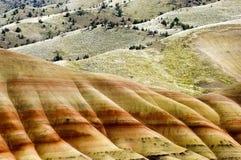 Oregon malowali wzgórza Fotografia Stock