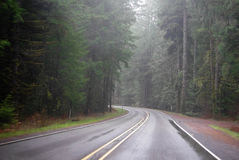 Oregon Mist Stock Photography