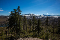 Oregon mountain scenery Stock Photography