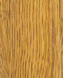 Oregon Oak Texture Stock Image