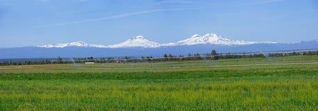 Oregon panorama Stock Image