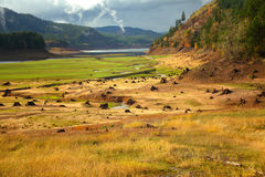 Oregon portrait. Drained reservoir reveals the stumps from a prior forest Stock Photos