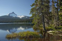 Oregon portrait. Shore line of Big Lake with Mt. Washington in the back ground located in the Oregon cascades Royalty Free Stock Images