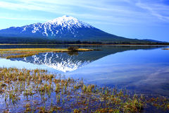 Oregon portrait. Mt. Bachelor reflection off of water. Located in central Oregon Stock Image