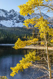 Oregon portrait. Fall color against snow capped mountains at Strawberry lake located close to Prarie City in eastern Oregon Royalty Free Stock Photo