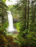 Oregon portrait. Portrait of Salt Creek falls in the spring of 2014 Stock Image